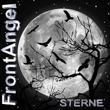 cover-frontangel-sterne